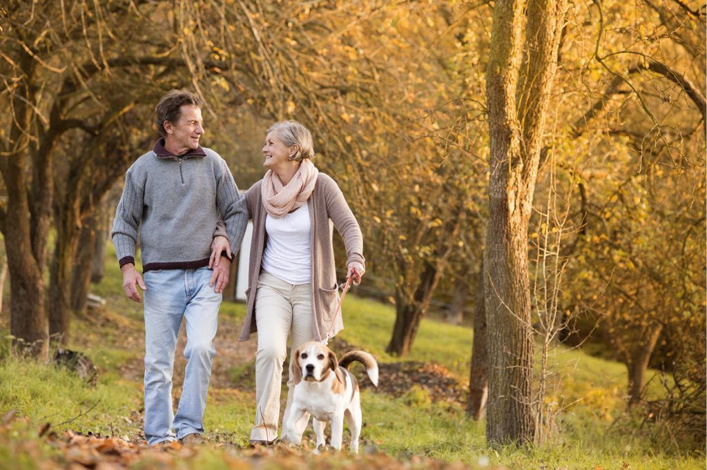 Partial knee replacement treatment Sussex
